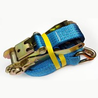 WORKSHOPPLUS Heavy Duty 5T Ratchet Strap With Claw Hook 10M